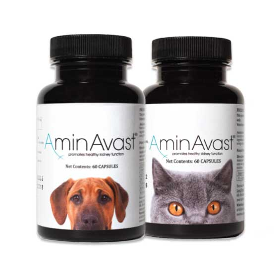 aminavast-for-cats-and-dogs-nextgenrx-pharmacy-broken-arrow-tulsa-oklahoma-pet-meds