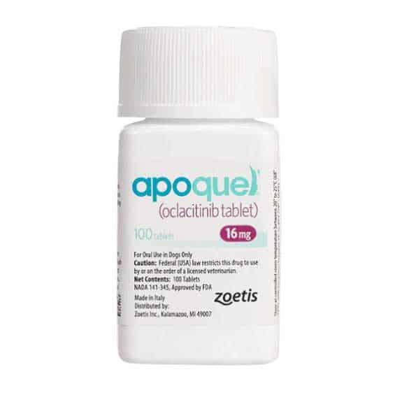 apoquel-for-dogs-nextgenrx-pharmacy-broken-arrow-pet-medications