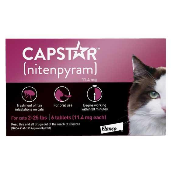 capstar-flea-treatment-for-cats-nextgenrx-pharmacy-broken-arrow-oklahoma