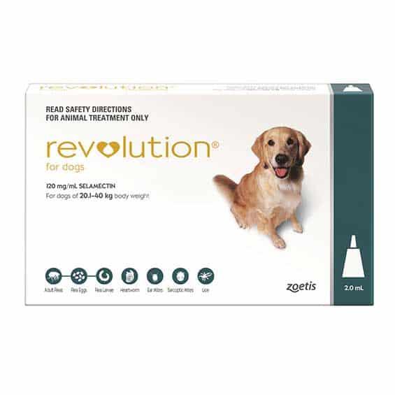 revolution-for-dogs-nextgenrx-pharmacy-topical-treatment-broken-arrow-oklahoma